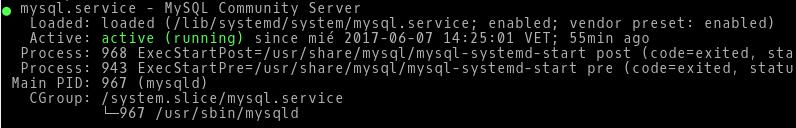 Respuesta de status de MySQL en la terminal