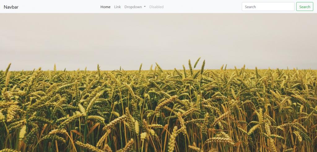 Navbar de Bootstrap con imagen